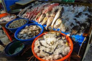 fisheries-2