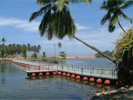 thiruvallam-backwaters
